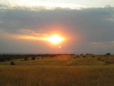 Beautiful Sunset at The Mara